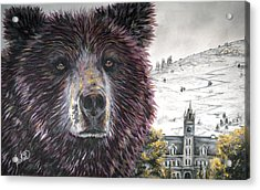 Glorious Griz Acrylic Print by Teshia Art