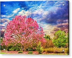 Glorious Spring Acrylic Print by Darren Fisher