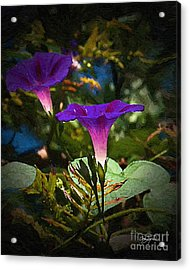 Glory Of The Morning Acrylic Print by Cris Hayes