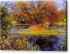Glossy Nature Acrylic Print by Deepti Chahar