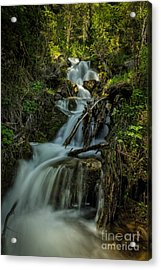 Glow At The Top Acrylic Print by Mitch Johanson