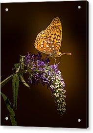 Glow Bug Acrylic Print