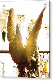 Glowing Angel Acrylic Print by Misty Stach