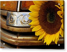 Gmc Sunflower Acrylic Print
