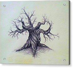 Gnarled Tree Acrylic Print