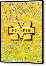 Go Michigan Acrylic Print by Lance Graves