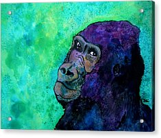 Go Sit In Time Out Acrylic Print by Debi Starr