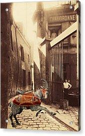 Goat On Passage De La Reunion Paris Collage Acrylic Print
