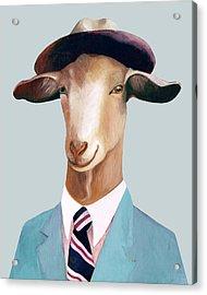 Goat Acrylic Print by Animal Crew