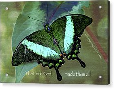 God Made Them All Acrylic Print by Karen Stephenson