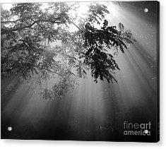God Rays Acrylic Print