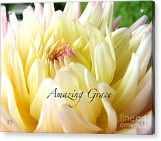 Acrylic Print featuring the photograph God's Amazing Garden by Margie Amberge