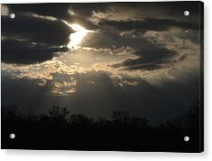 Acrylic Print featuring the photograph Gods Creation by Dacia Doroff