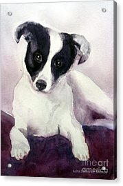 Goggles The Stray Dog Acrylic Print