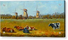 Going Dutch Acrylic Print by Chris Brandley
