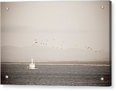 Acrylic Print featuring the photograph Going Fishing by Erin Kohlenberg