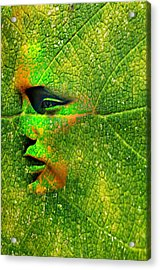 Going Green Acrylic Print by Diana Angstadt