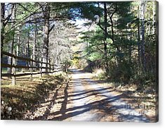 Going Home By Angela Clay Acrylic Print by Angelia Hodges Clay