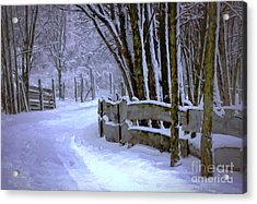 Going Home Acrylic Print