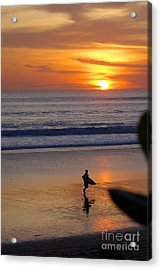 Going Home Acrylic Print by Serene Maisey