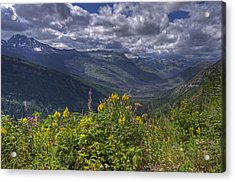 Going To The Sun Road Acrylic Print by Darlene Bushue