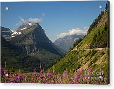 Going To The Sun Road Acrylic Print by Natural Focal Point Photography