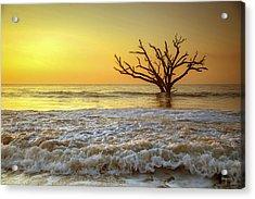 Gold Coast Acrylic Print