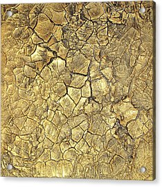 Gold Fever 1 Acrylic Print by Alan Casadei