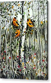 Gold Finches Acrylic Print