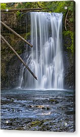 Gold In The River Acrylic Print by Loree Johnson