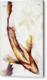 Gold Mangrove  Acrylic Print