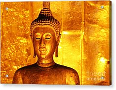 Acrylic Print featuring the photograph Gold On Gold by Nola Lee Kelsey