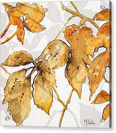 Gold Shadows II Acrylic Print