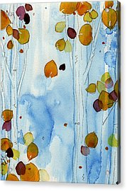 Golden Aspens Acrylic Print by Dawn Derman