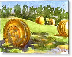 Golden Bales In The Morning Acrylic Print by Kip DeVore