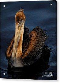 Golden Beauty Acrylic Print