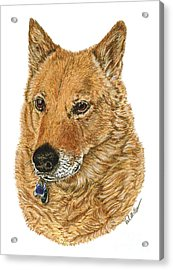 Acrylic Print featuring the drawing Golden Beauty by Val Miller