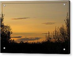 Acrylic Print featuring the photograph Golden Daybreak by Liz  Alderdice