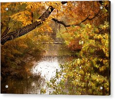 Golden Days Acrylic Print by Jessica Jenney