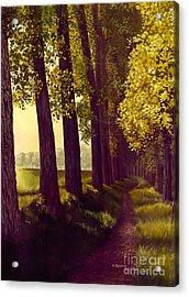 Golden Days Acrylic Print by Michael Swanson