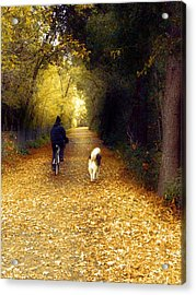 Golden Days Of Fall Acrylic Print