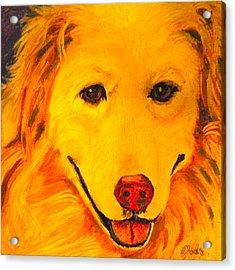 Golden Acrylic Print by Debi Starr