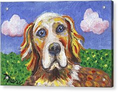 Golden Dog Acrylic Print by Linda Mears