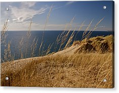 Golden Dune Grass On The Lake Acrylic Print
