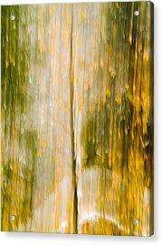 Golden Falls  Acrylic Print by Bill Gallagher
