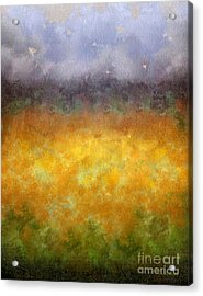 Golden Fields Acrylic Print by Darla Wood
