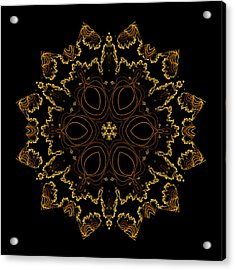Acrylic Print featuring the digital art Golden Flower Of The Night by Owlspook