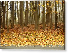Golden Forest Art Acrylic Print by Boon Mee