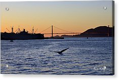 Acrylic Print featuring the photograph Golden Gate Bridge by Alex King