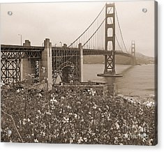 Golden Gate Bridge And Summer Flowers In Sepia Acrylic Print by Connie Fox